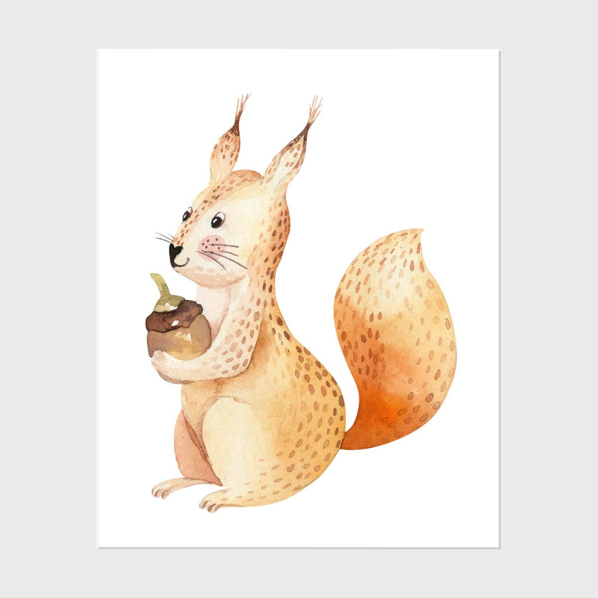 17. Squirrel (2)