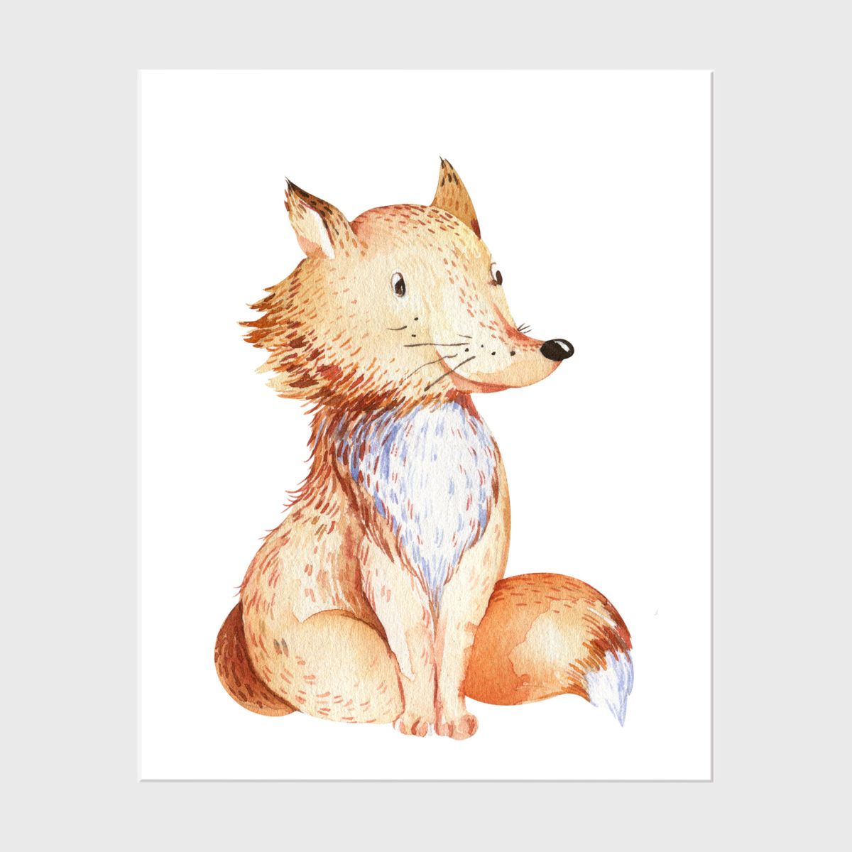 27. Fox without floral