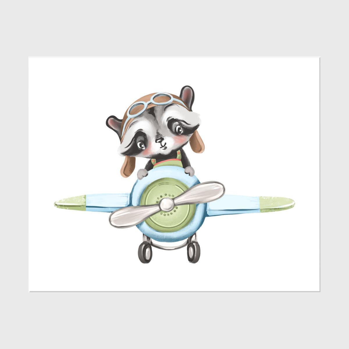 17. Baby racoon pilot