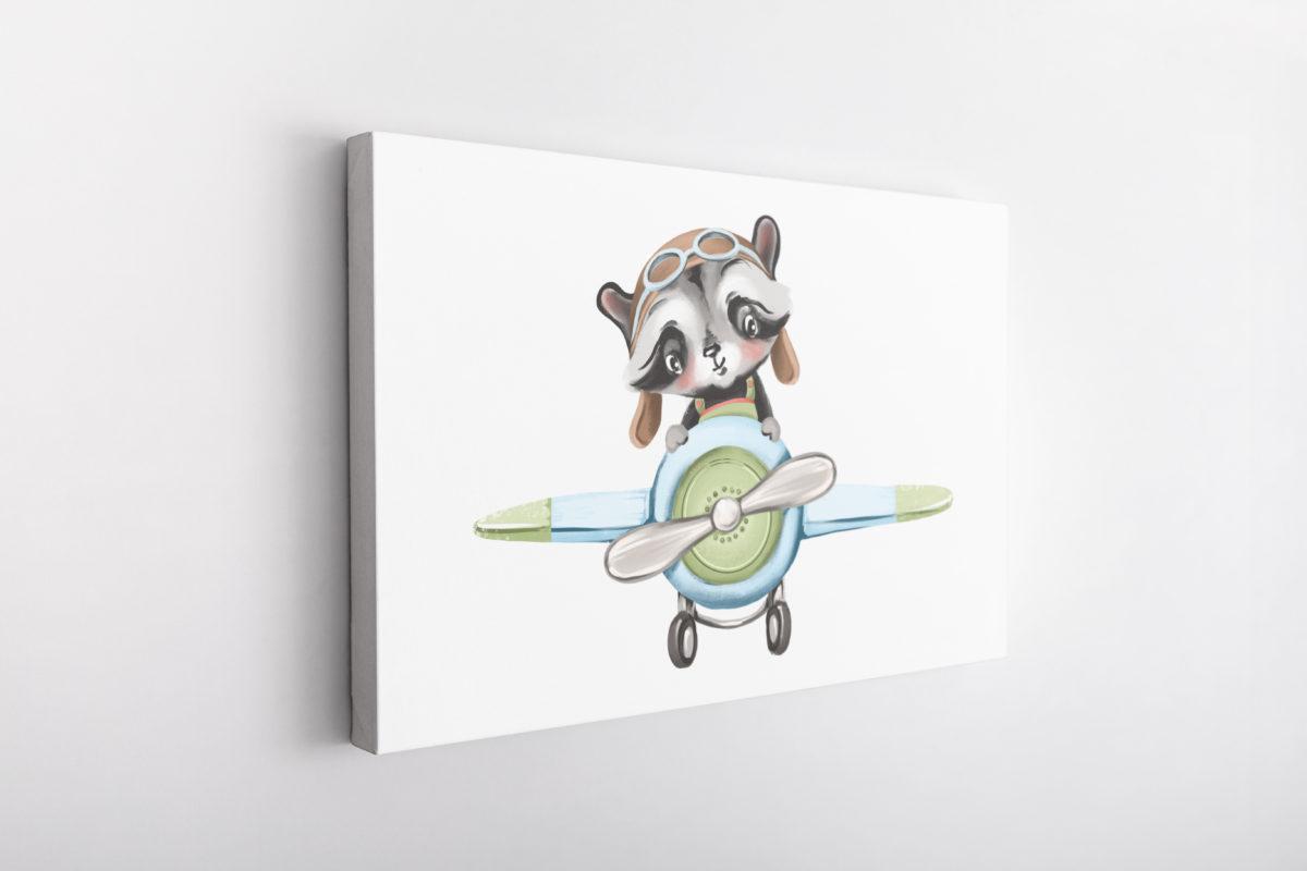Little Raccoon Pilot