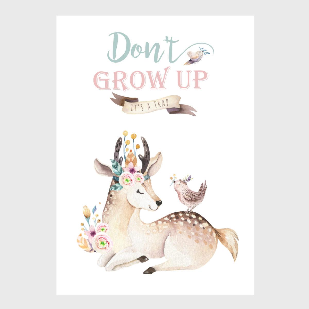 Dont grow up – Deer – A2 -NF