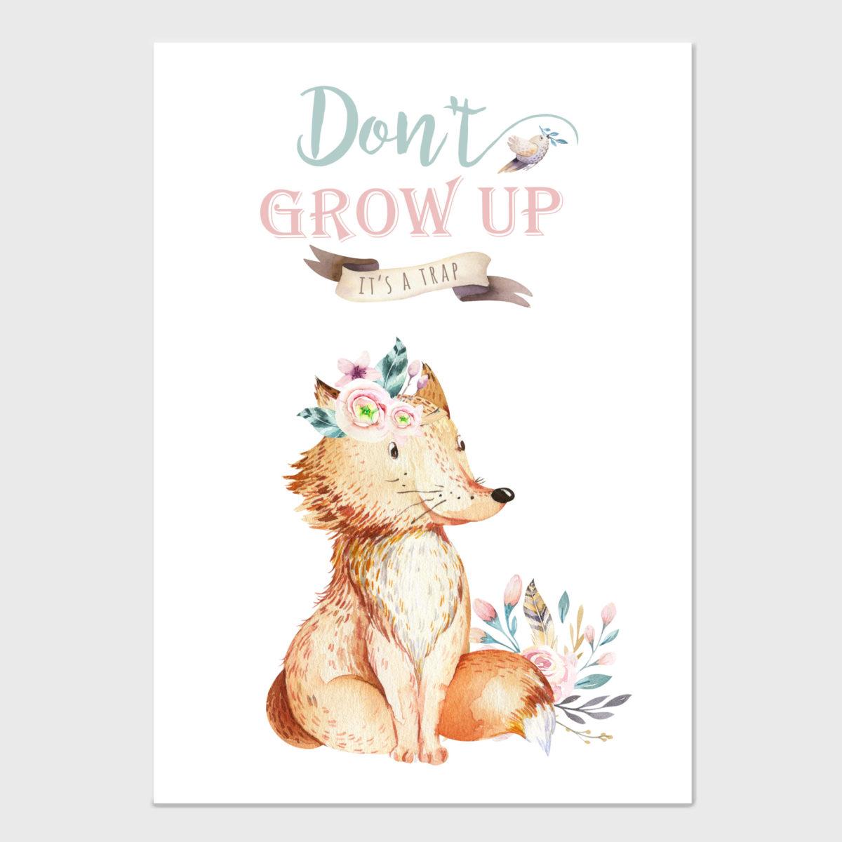 Dont grow up – fox- A2 -NF