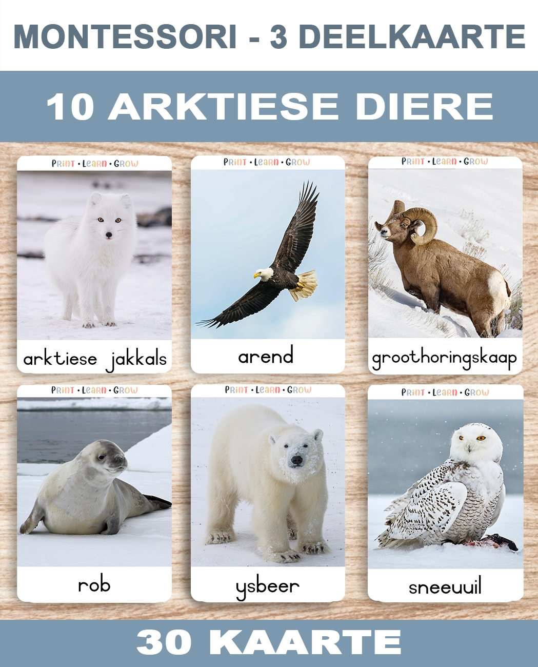 0. Artiese Diere – Cover A
