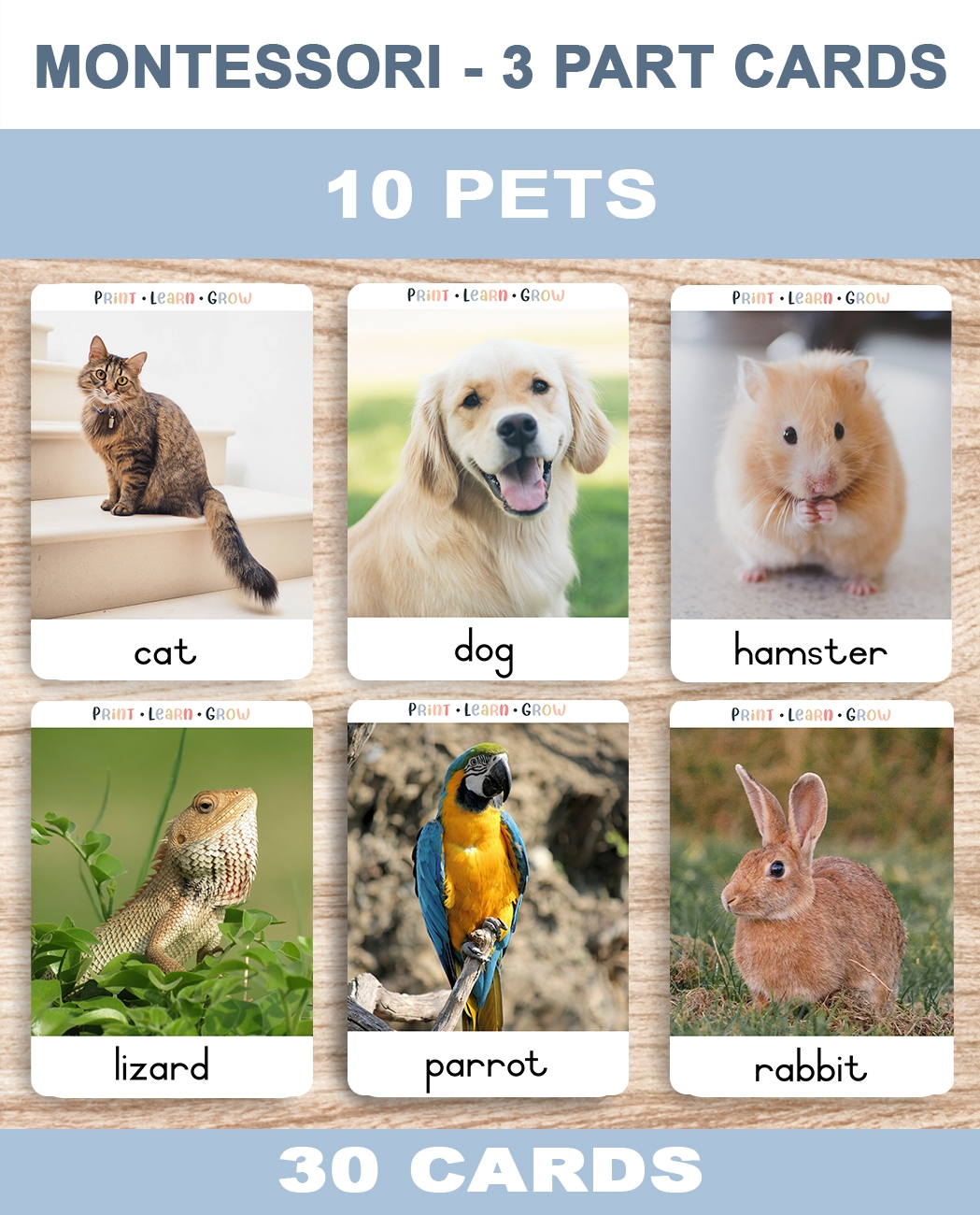 0. Pets – Cover – TemplateA