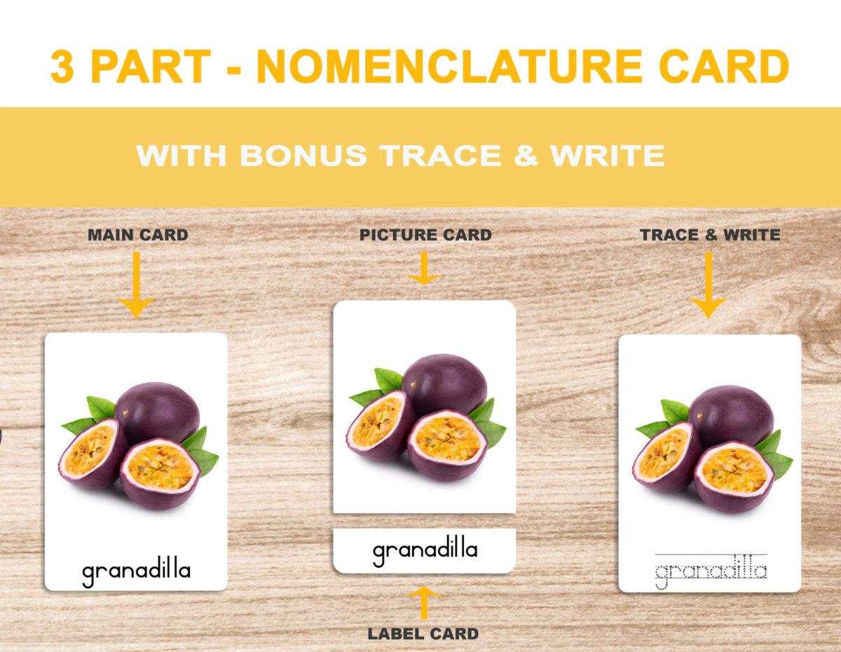 1. Fruits – Nomenclature Template