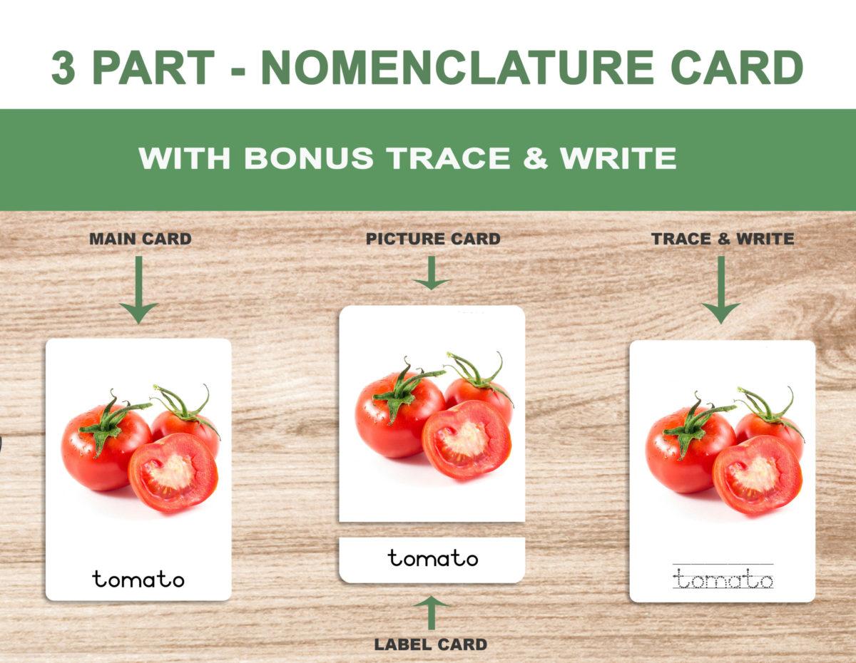 1. Vegetables – Nomenclature Template