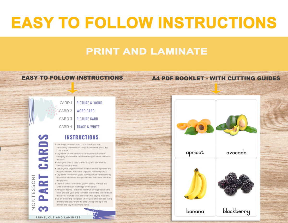 2. Fruits – Instructions Template