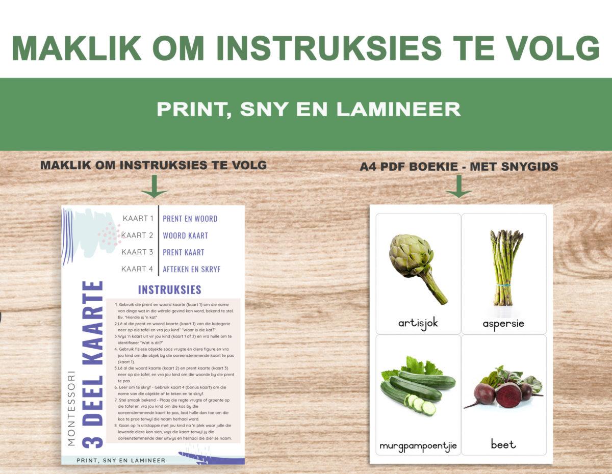 2. Groente – Instructions Template