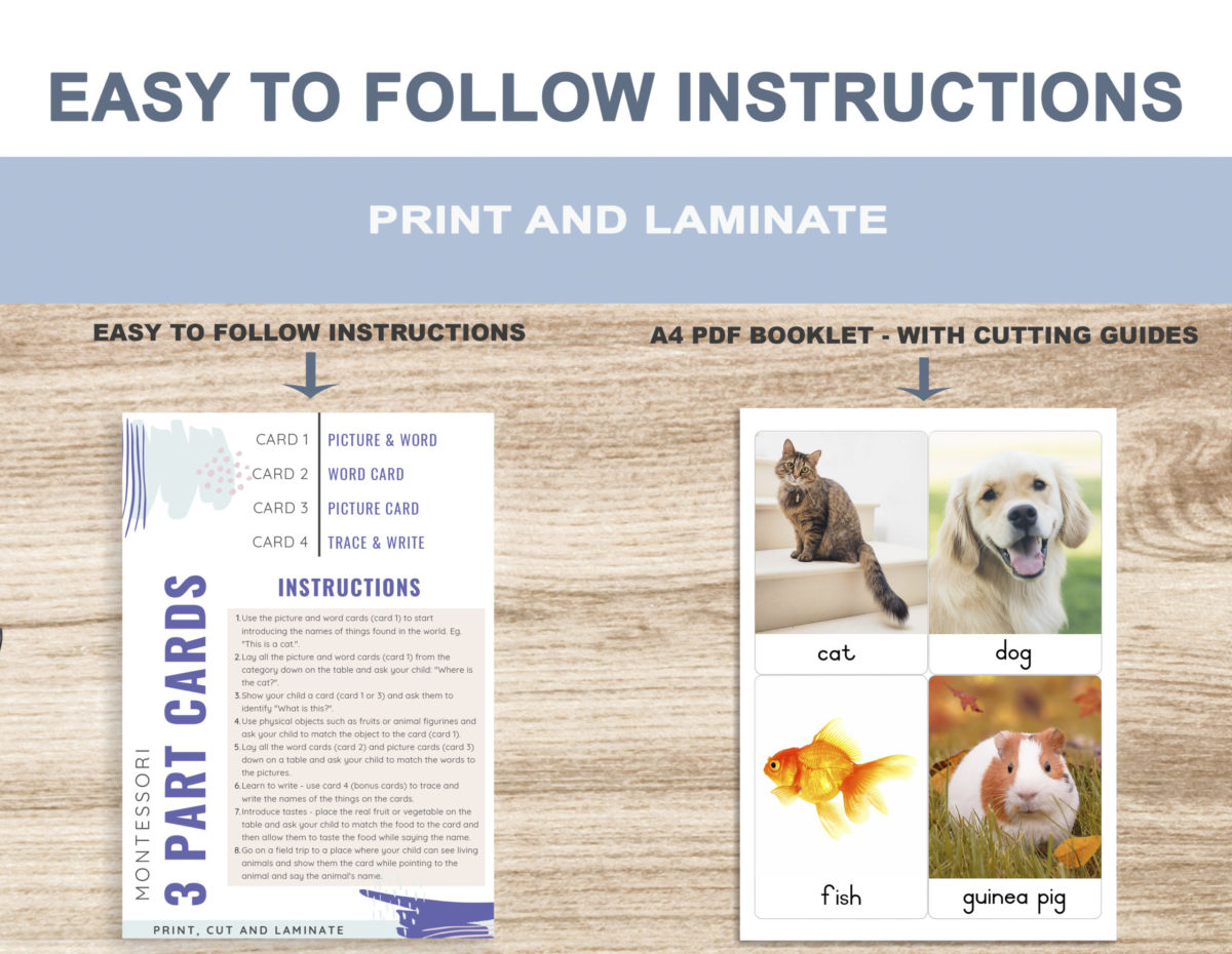 2. Pets – Instructions Template