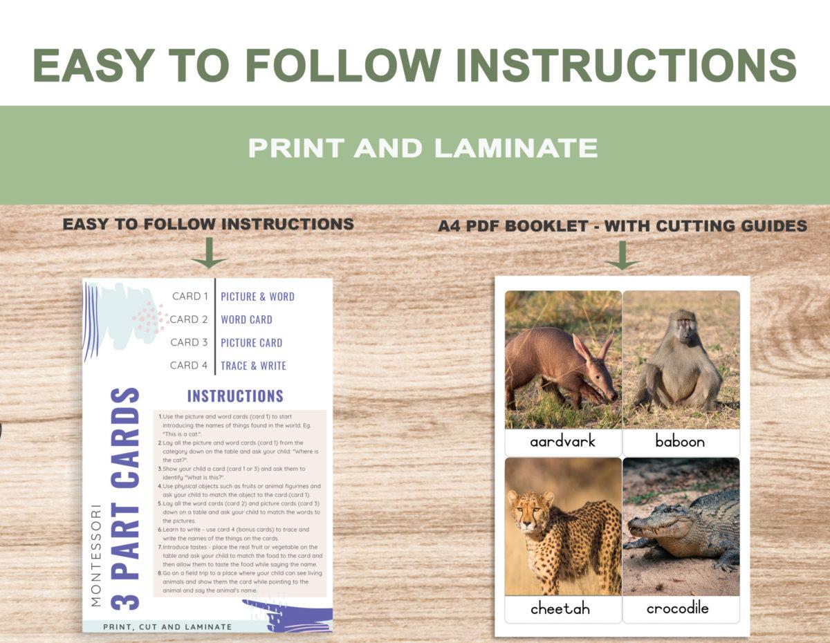 2. Safari Animals – Instructions Template