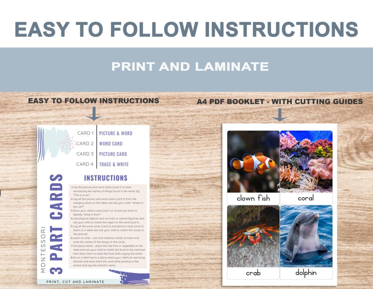 2. Sea Animals – Instructions Template