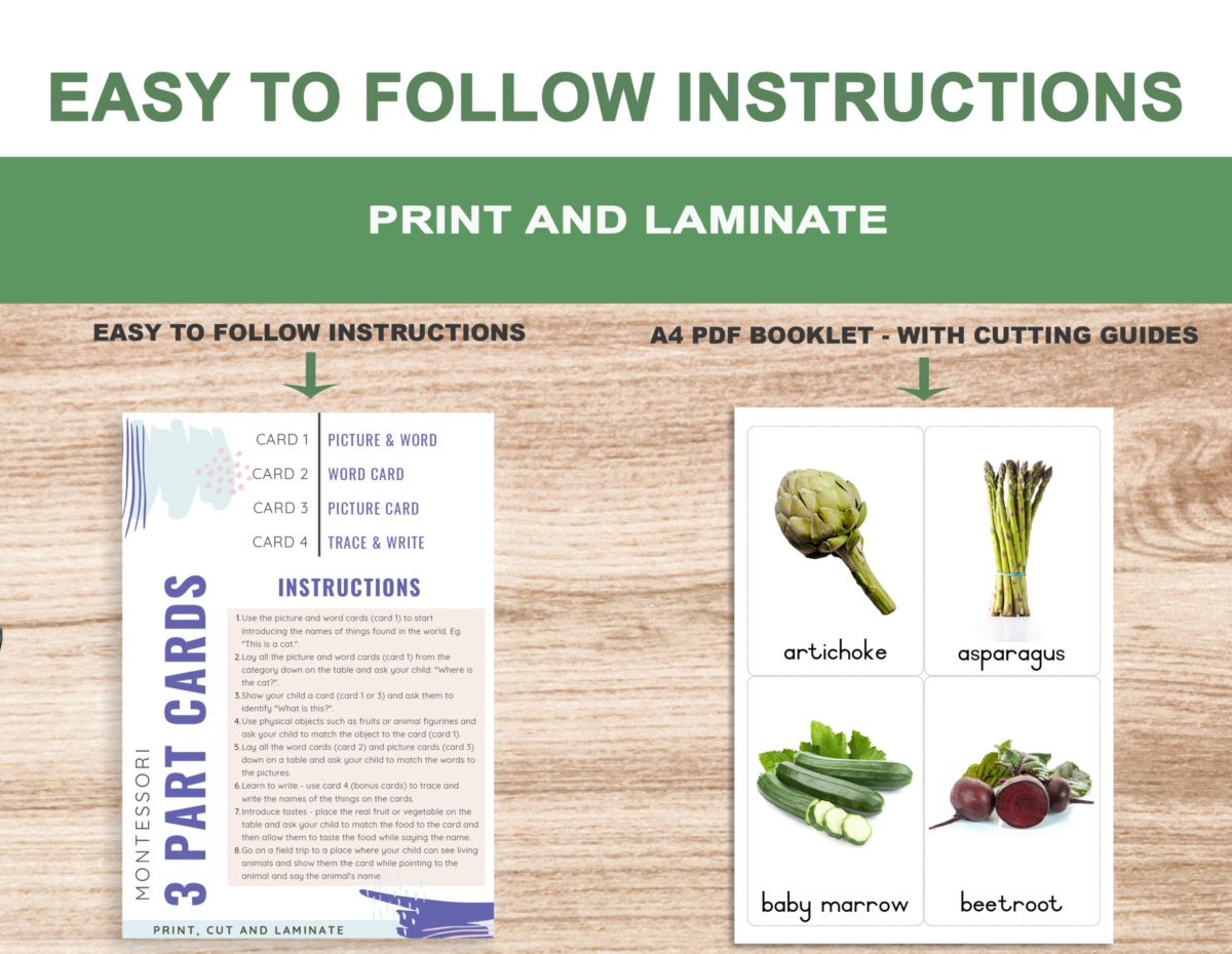 2. Vegetables – Instructions Template