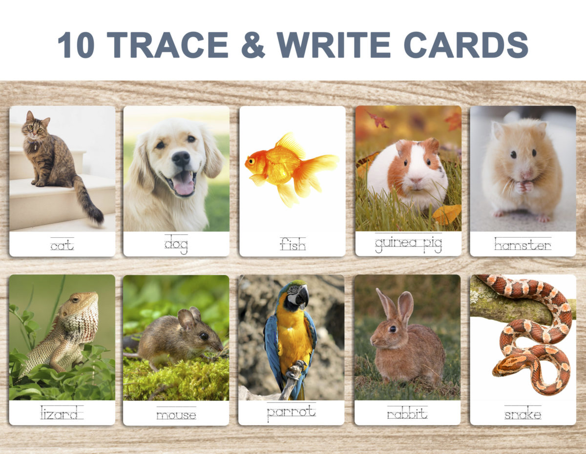 7. Pets – Trace and Write Cards template