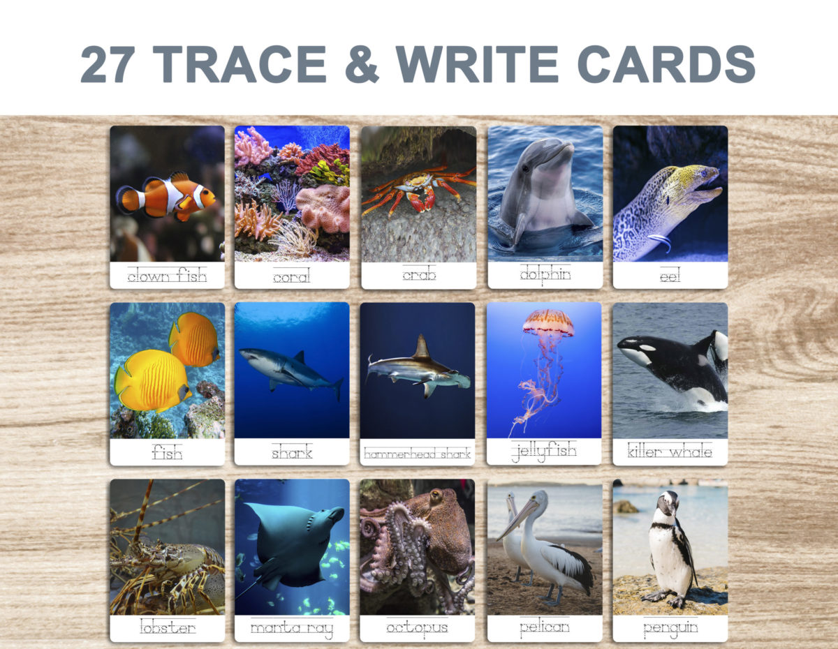7. Sea Animals – Trace and Write Cards template