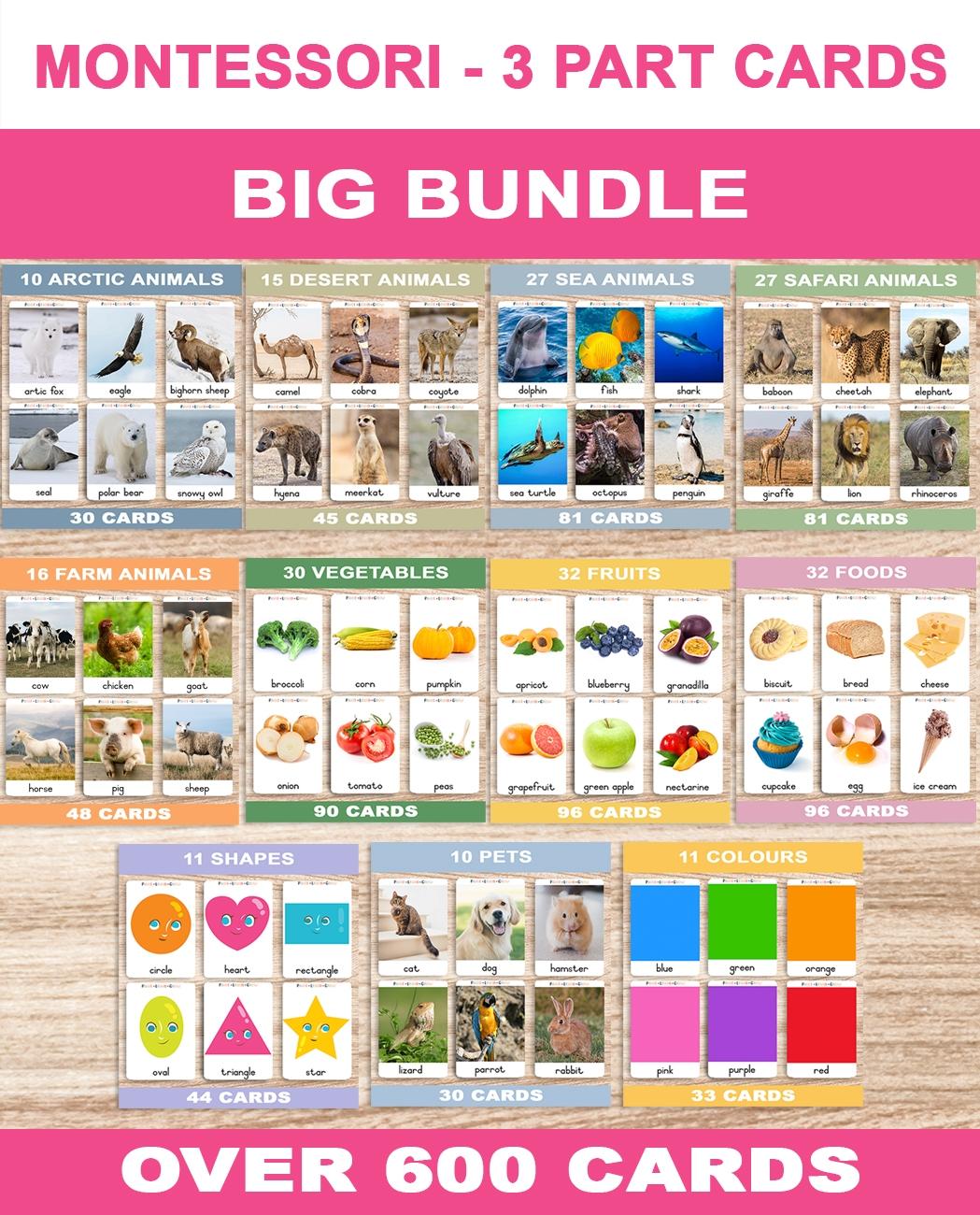 Montessori – Big Bundle – English