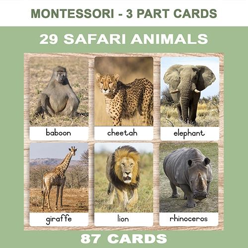 SAFARI ANIMALS – NEW Website Cover – ENG